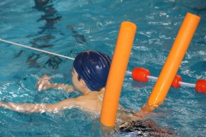 swim-619074_1280