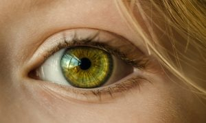 eye-1132531_1280 (2)